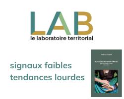 Read more about the article Signaux faibles, tendances lourdes identifiés par Lab Territorial