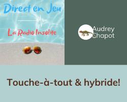 Read more about the article Série «Touche-à-tout et hybride» en co-animation avec Alain Moreno sur Direct en jeu